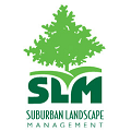 SLM Wichita website design logo